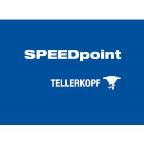 SPEEDpoint Tellerkopf T-STAR Holzbau Schrauben